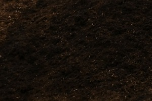 Shredded bark mulch in Peoria IL, hardwood bark mulch, wholesale mulch in Peoria IL